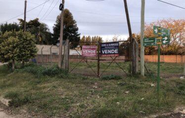 Lotes en calle Alberdi y Piedrabuena (REBAJADOS) OPORTUNIDAD!!!