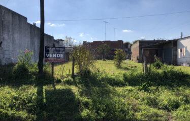 Lote en Calle 221 (José Ingenieros) a 10 mts. de Cardoner
