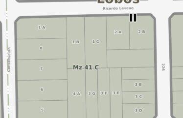 Loteo en calles Jose Ingenieros, Levene, 224 y 226 (lote de 271 mts2. rebajados!!! desde U$S 19.000 consulte financiación)